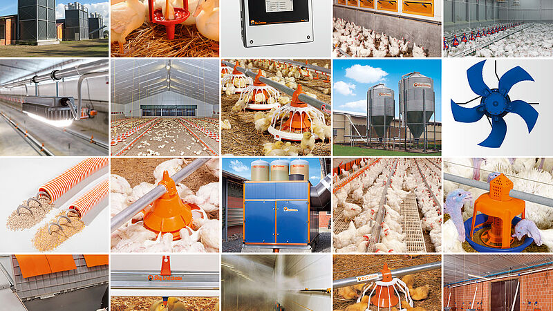 Soluzioni per la produzione di carne