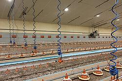 Interno del capannone con tubi a spirale sospesi