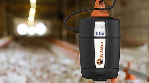 Immagine del sensore di ammoniaca in un allevamento di broiler