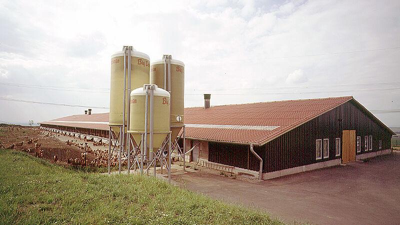 Produzione uova in free range in Sassonia