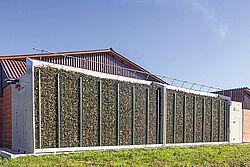 Stallvorbau gefüllt mit Wurzelholz