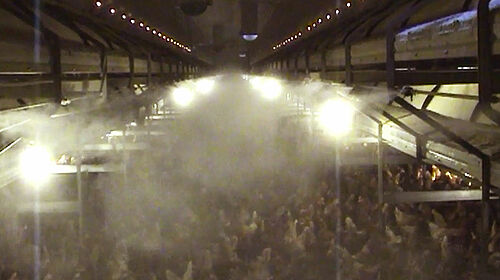 Acqua nebulizzata sopra al pavimento