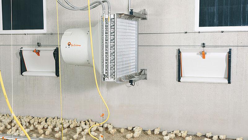 Stallklima: Optimale Temperaturen im Geflügestall mit HeatMaster