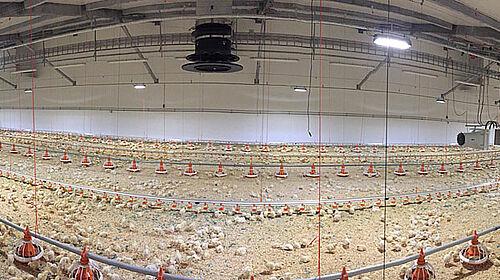 Fotografia panoramica che mostra l'interno del capannone.