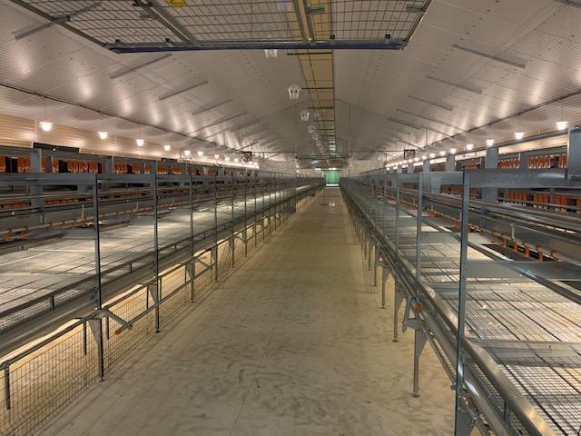 Sistema con due file e corridoio centrale